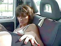 Francés Peludo madre en el camino ... F70