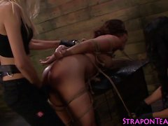 Kinky mistress bangs sub