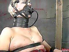 Muzzled babe needs wild taming