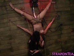 Lesbian bound slave toyed
