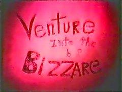 Venture Into The Bizarre