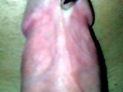 Riesigen Schwanz Piercing