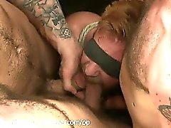 Bound Christopher Daniels swallows cocks