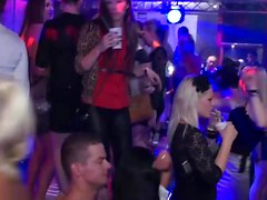 Club babes try out various dicks
