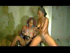 Africa X Sauvage 5