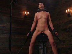 Locked trimmed head slave pussy tormented