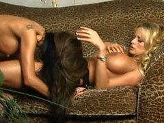 Pornstars Stormy Daniels & Tabitha Stevens go Lesbian