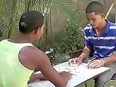 Exotic Minets compagnons de joue ruban dominos des une gâterie