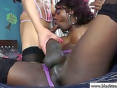 Shemale ebony amateur getting anal in her tight butt