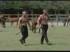 We sucked his horse dick at the ranch