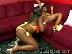 Bootylicious ebony lezzie devours wet blacobed-black-babe-fucked-by-a-chick-HI-3