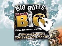 big butts like it big 3 cd1