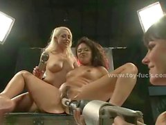 Large pussies and asses fucked by electric machines in foursome lesbian orgy