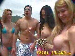 Tgirl island Alexia