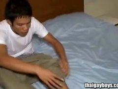 Thai homopoika esittelee