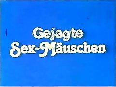 Gejagte Sex-Maeuschen