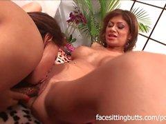 Une énorme orgie de pornographie lesbienne avec des tonnes de gros seins et d'orgasmes