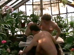 Ggay seks