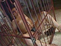 Transsexual Bondage 02 - Scene 1