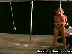 Sexy horny great body babe gets bondage