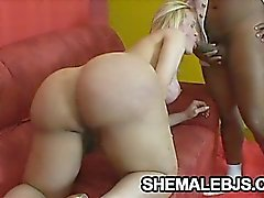 Curvy shemale sucking a black cock