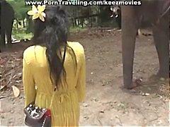 Brunette neito saa kasvot vitun elefantti musta mulkku sitten menee käymäännorsuja