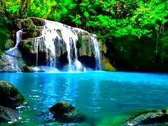 Cascata in una giungla, così tranquilla UPGRADED 2000x1075 HD.avi