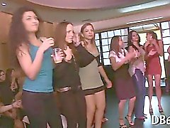 Attractive bitches engulfing in disrobe club