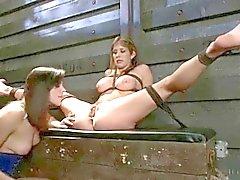 BDSM tiedostot 046
