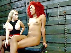 Aiden Starr and Daisy