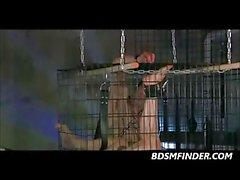 Caged Robotic Gang Bang