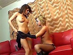 Rough Lesbian Sodomy 2