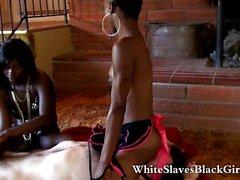 White dominated by ebony femdom girls