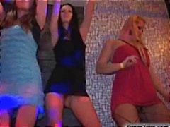 Wild Sex Party kukko imevät