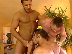 Desperate Househusbands 3