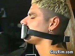 Homoseksüel kovboy hâkim