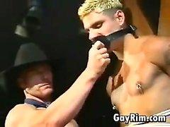 Homosexuell Cowboy dominierende