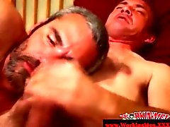 Mature gay duo sucking cock on the sofa