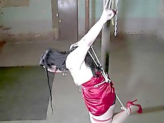 kitty tied and gagged