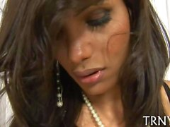 Delicious tranny rubs her cock through lace panties all alone