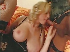 Transsexual Babes In Lingerie