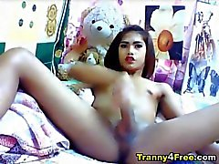 Huge Tranny Cock Masturbation on webcam