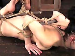 Frogtied bondage session