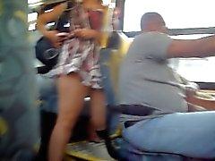 guardone di bus 2