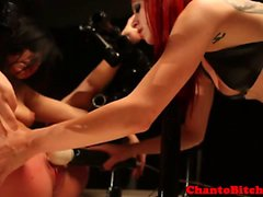 Femdom mistress fingers her gaggged sub