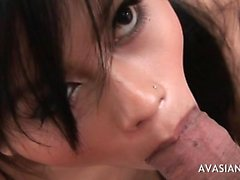 Asian brunette sucking and tit fuck