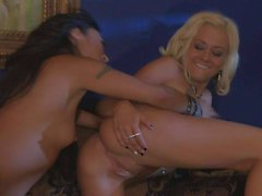 horny lesbians eating pussy