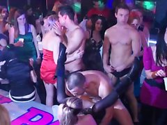 Sexy babes at a party get drilled