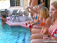 Lauren's CFNM Bacherlorette Day Surprise from the Dancing Bear (db9263)