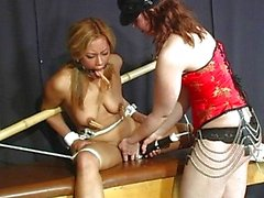 Sexy bondage sluts have fun